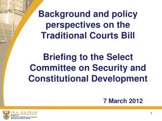 Background and policy perspectives on the Traditional Courts Bill   Briefing to the Select Committee on Security and Con
