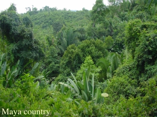 belize nature and people