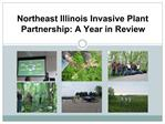 Northeast Illinois Invasive Plant Partnership: A Year in Review
