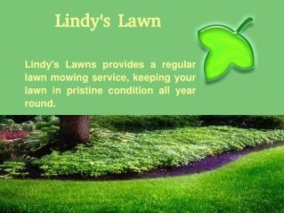 Landscaping McKinney TX