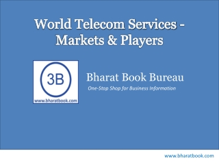 World Telecom Services - Markets