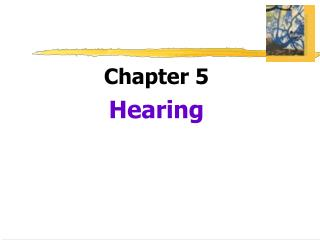 Chapter 5  Hearing