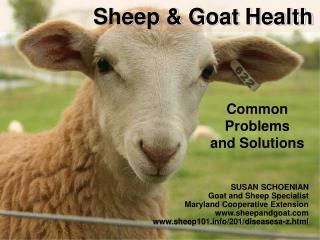 Sheep  Goat Health