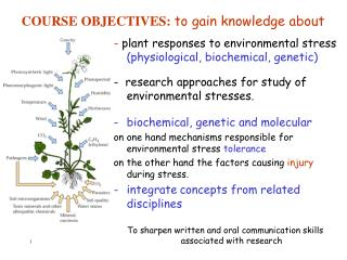 COURSE OBJECTIVES: to gain knowledge about