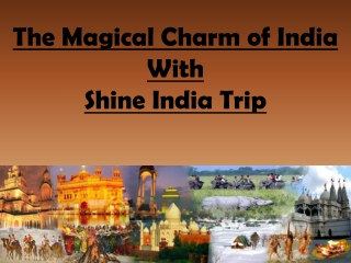The Magical Charm of Holidays in India