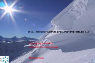 WSL-Institut f r Schnee und Lawinenforschung SLF