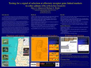 Testing for a signal of selection at olfactory receptor gene-linked markers in coho salmon Oncorhynchus kisutch Marc A.