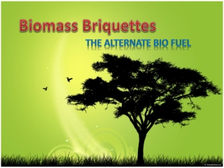 Biomass Briquettes - The Alternate Bio Fuel