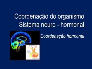 Coordena  o do organismo Sistema neuro - hormonal