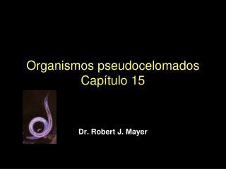 Organismos pseudocelomados Cap tulo 15