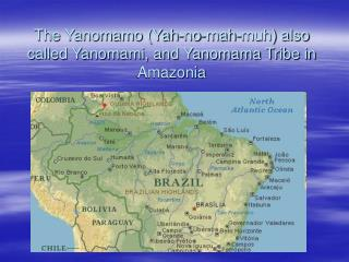The Yanomamo Yah-no-mah-muh also called Yanomami, and Yanomama Tribe in Amazonia