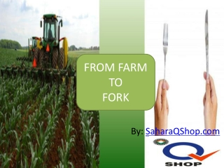 Sahara Q Shop Consumer Products From Farm To Fork!