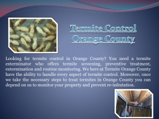 Termite Killer Orange County