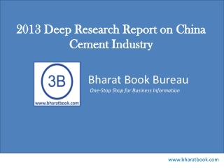 2013 Deep Research Report on China Cement Industry