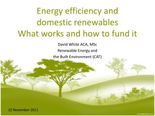 Energy efficiency and  domestic renewables What works and how to fund it