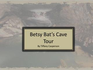 Betsy Bat s Cave Tour By Tiffany Casperson
