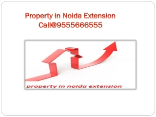 property in noida extension, noida extension property