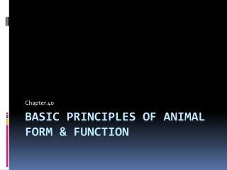 Basic principles of animal form  function
