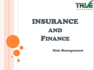 Insurance - Risk Management