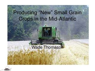 Producing  New  Small Grain Crops in the Mid-Atlantic