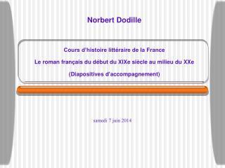 Norbert Dodille   Cours d histoire litt raire de la France  Le roman fran ais du d but du XIXe si cle au milieu du XXe D