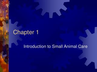 Introduction to Small Animal Care