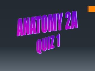 ANATOMY 2A