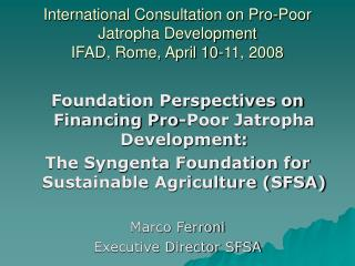 International Consultation on Pro-Poor Jatropha Development IFAD, Rome, April 10-11, 2008