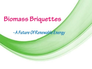 Biomass Briquette -The Future Of Renewable Energy