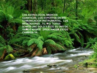 LOS ASTROLOGOS, MEDICOS CUANTICOS, LOS EXPERTOS EN BIO COMUNICACION INSTRUMENTAL,  LOS MEDITADORES , TU,  YO, TODOS SOMO