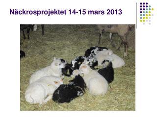 N ckrosprojektet 14-15 mars 2013