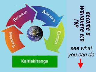 Become a Waitakere Eco rep