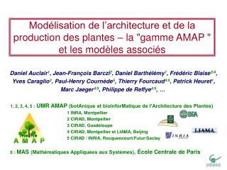 Mod lisation de l architecture et de la production des plantes   la gamme AMAP  et les mod les associ s
