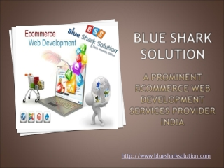 A prominent ecommerce web development services provider