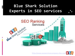 Blue Shark Solution � Experts in SEO services