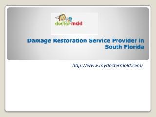 Water Mold Damage in Boca Raton FL