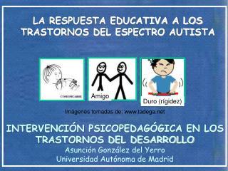LA RESPUESTA EDUCATIVA A LOS TRASTORNOS DEL ESPECTRO AUTISTA
