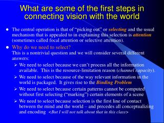 What are some of the first steps in connecting vision with the world