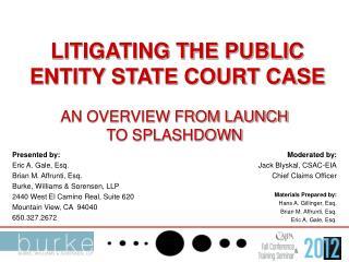 LITIGATING THE PUBLIC ENTITY STATE COURT CASE
