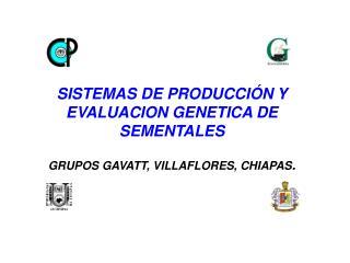 SISTEMAS DE PRODUCCI N Y EVALUACION GENETICA DE SEMENTALES   GRUPOS GAVATT, VILLAFLORES, CHIAPAS.