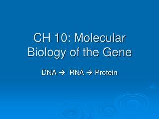 CH 10: Molecular Biology of the Gene