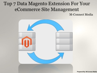 Top 7 Data Magento Extension For Your eCommerce Site Managem