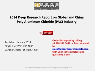 Poly Aluminum Chloride (PAC) Market 2014