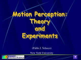 Motion Perception: Theory and Experiments