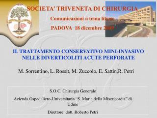 M. Sorrentino, L. Rossit, M. Zuccolo, E. Sattin,R. Petri