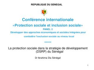 Conf rence internationale  Protection sociale et inclusion sociale    PANEL 2  D velopper des approches  conomiques et s