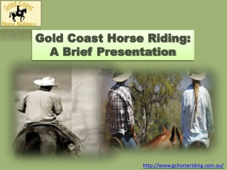 Gold Coast Horse Riding offers horse riding lessons of the h