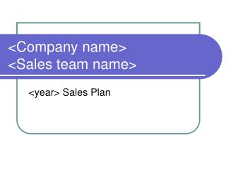 Company name Sales team name