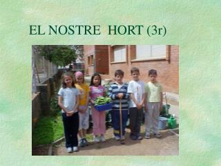 EL NOSTRE  HORT 3r