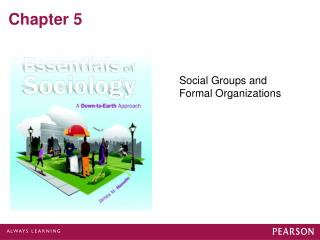 Social Groups and Formal Organizations